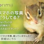 primiiクーポン,プリミィ割引クーポン,primii割引クーポン,primii,プリミィクーポン,オンラインクーポン,webクーポン,最新,