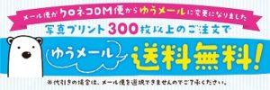 shirokuma-coupon